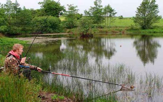 вытаскивание пойманной рыбы