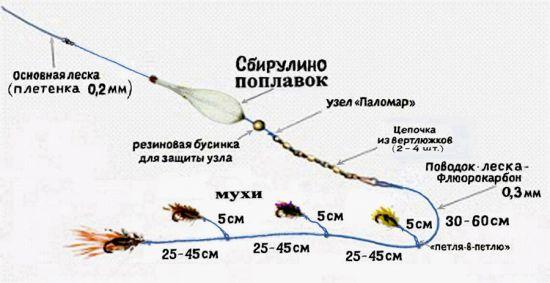 Боламбошка с четырьмя мухами