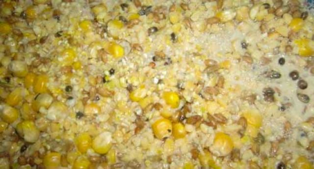 Кукуруза в прикорме