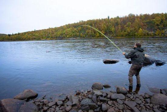 рыбалка на голавля