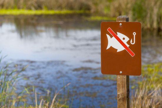 знак {amp}amp;quot;запрещена ловля рыбы{amp}amp;quot;