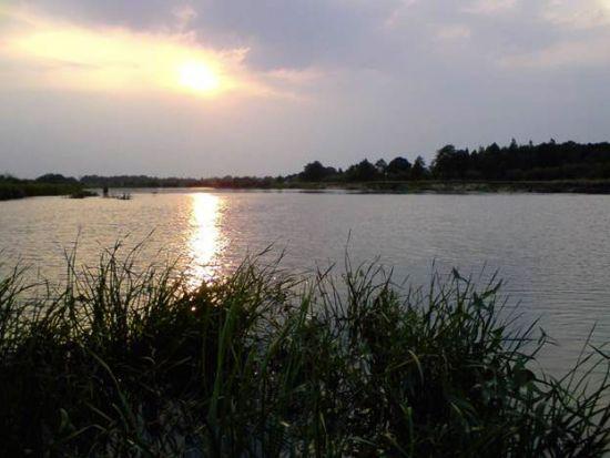 рыбалка на вечерней зорьке