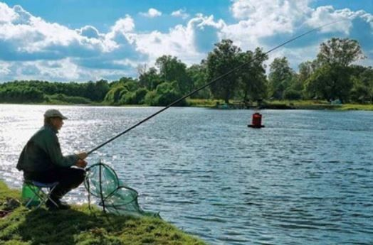 ловля на поплавочную удочку с кормушкой