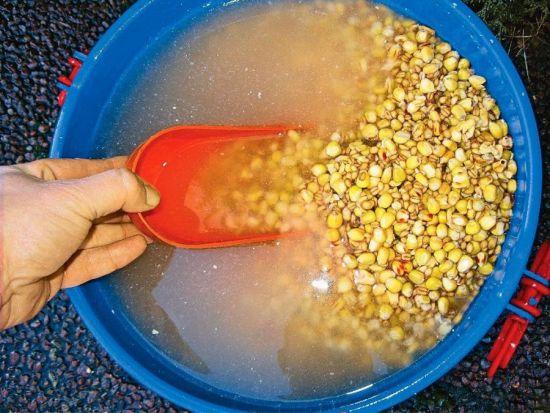 замачивание зерновых