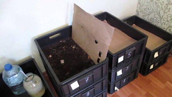 Ящики в квартире