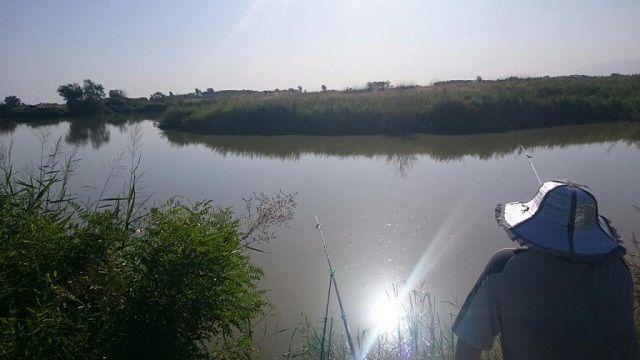 На Кашарском озере