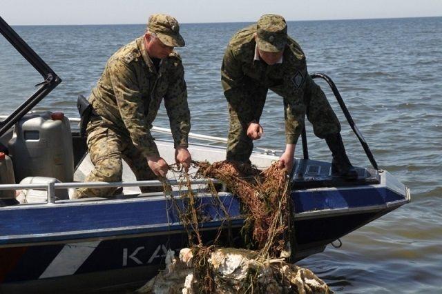 Рыбаки выбирают сеть