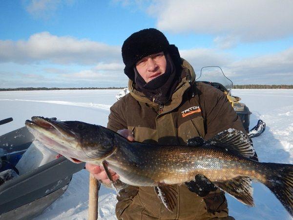 Рыболов-зимник со щукой