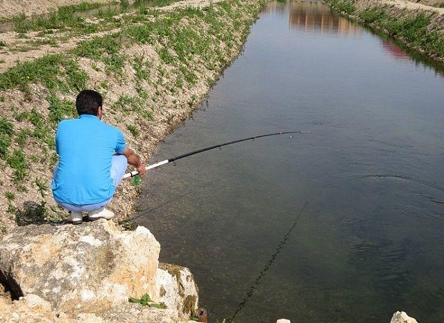 Речка с чистой водой