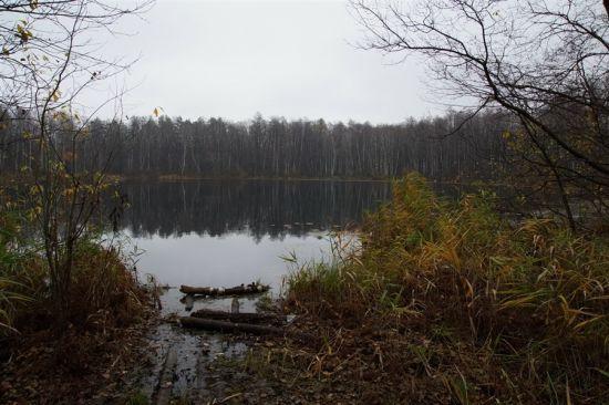Берега озера Святовское