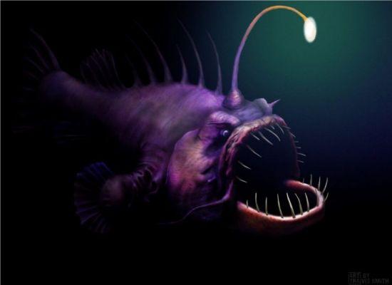 светящаяся приманка хищника