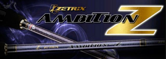 Zetrix ambition z