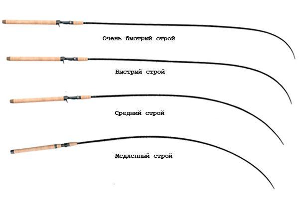 Изгибы спиннингов и их строй