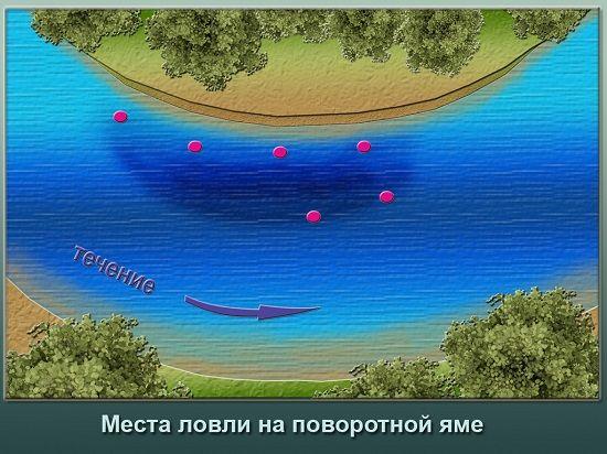 Точки на повороте реки