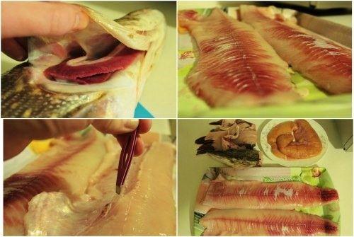 схема разделки рыбы