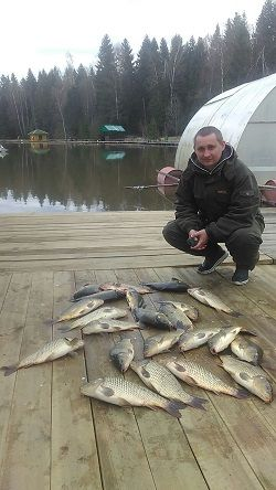 Рыбак с уловом карпов