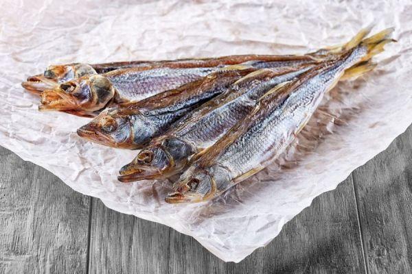 рыба на бумаге