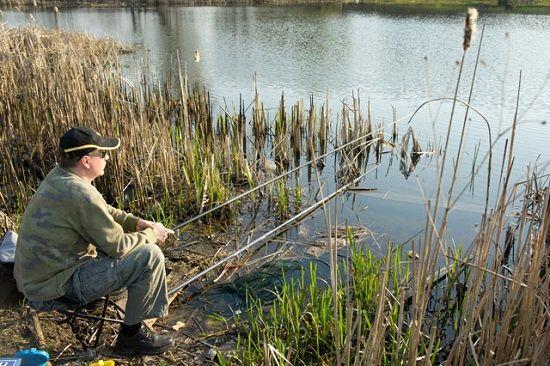 Рыбак с удочками