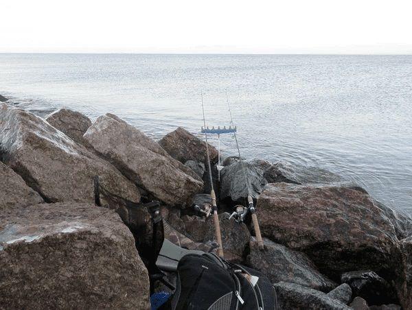 Фидеры на море