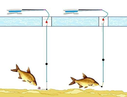 схема зимней поплавчанки