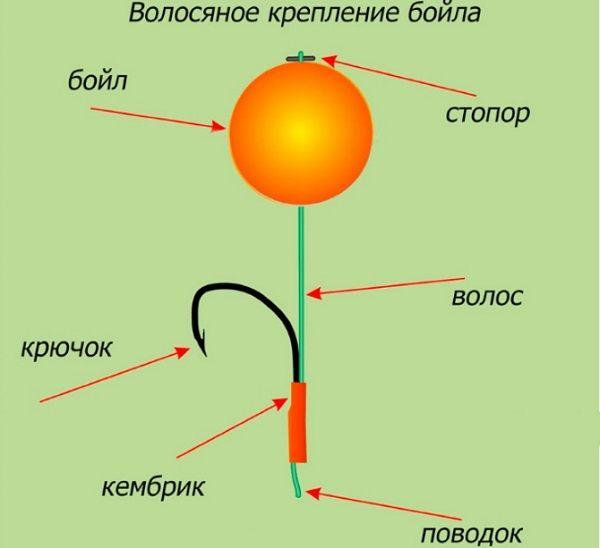 Схема волосяной оснастки