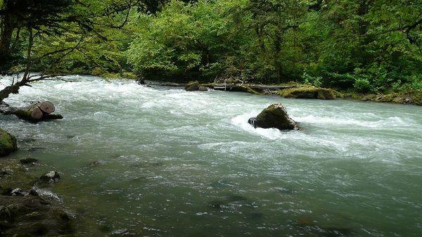 На быстрой реке