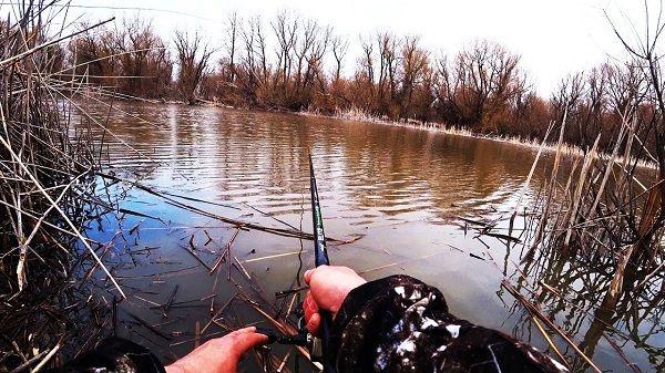 Рыбалка на протоке