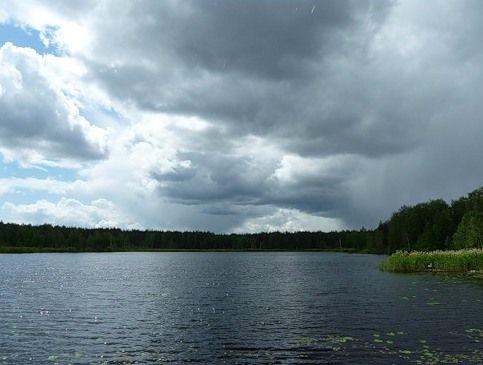 На озере Светлая жизнь