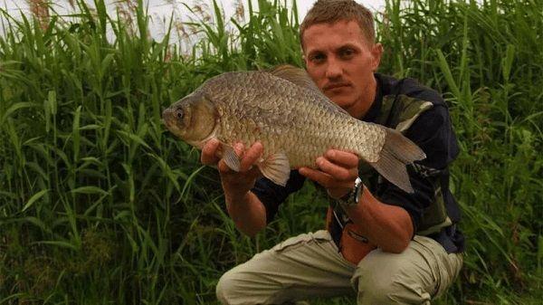 Крупный карась в руках рыболова