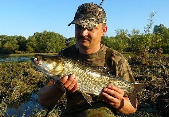 Рыбак с жерехом