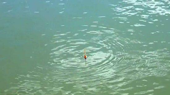 Поплавок на воде