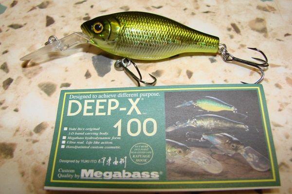 Deep-X 100