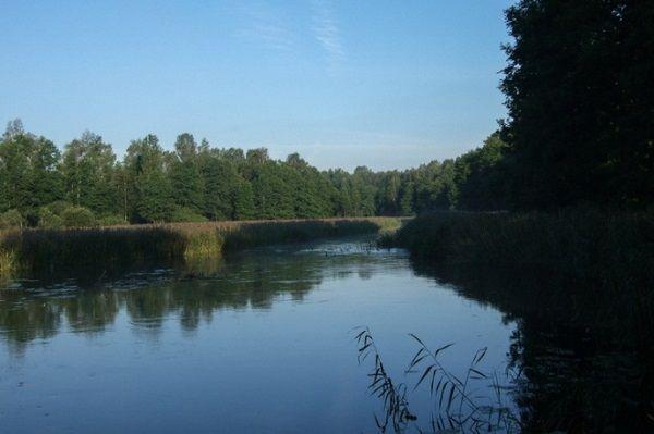 На реке Великой