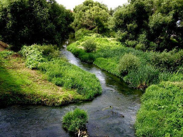 Десна в верхнем течении