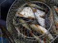 способ хранения рыбы