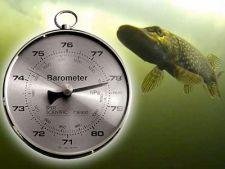 норма атмосферного давления для рыбалки