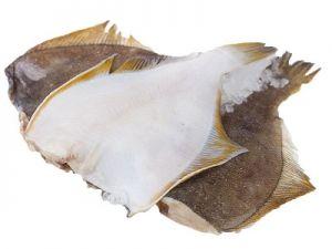 Белое мясо камбалы