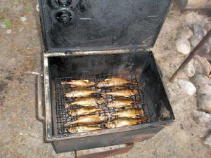 Рыба в коптильне