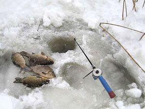 ловля карася в феврале
