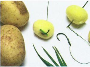 Картофель как насадка