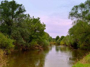 рыбалка в мутной воде весной