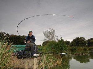 Рыболов с удочкой на берегу