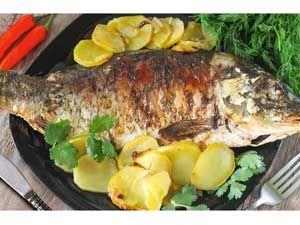 Рыбацкие рецепты приготовления рыбы чип тюнинг инжекторов автомобилей