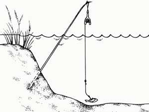 жерлица для ловли щуки