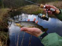 Простая оснастка поплавочной удочки для ловли форели