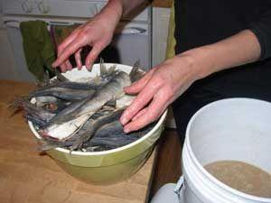 засол рыбы для сушки